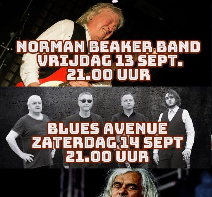Bluesfestival Oosterhout programma Cafe de Apotheek